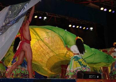 Año 2011 Brasil. Festival Folklórico de los Pirineos de Jaca